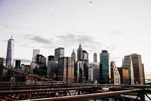 road New York City during daytime new york