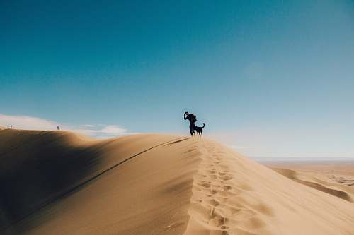 nature silhouette photo of person and dog on desert mountain dune