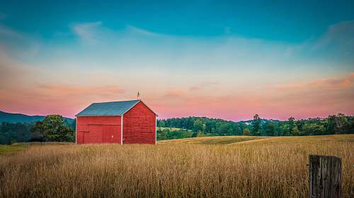 united states red barn house surrounded with trees during golden hour field