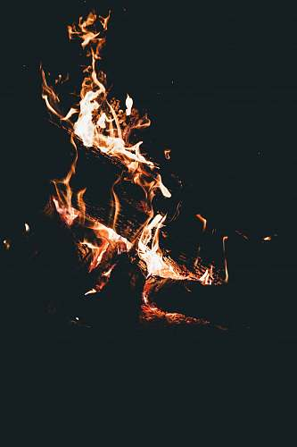 flame burning woods camping