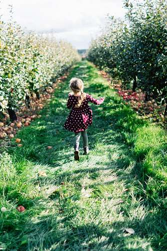 grass girl wearing maroon and white polka-dot dress running on grass pathway field plant