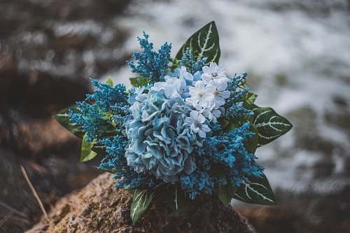 united states green and blue petaled flower bouquet madison
