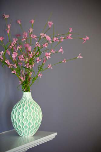blossom pink petaled flowers on green vase vase