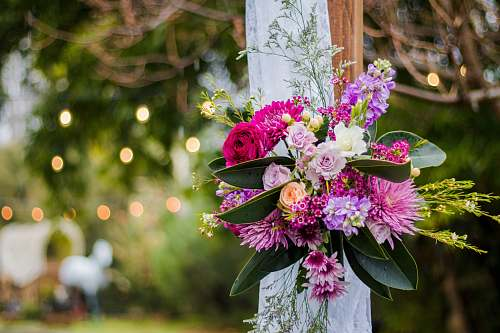 wedding shallow focus photo of pink and purple flowers flower bouquet