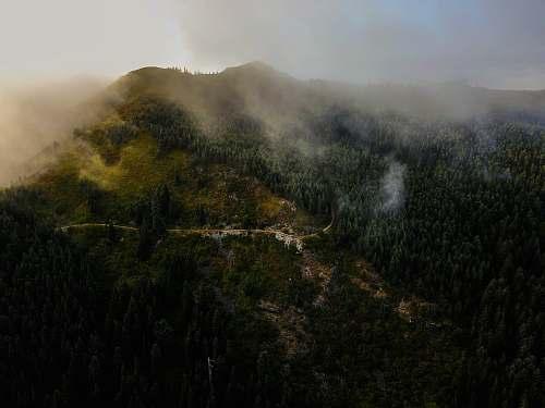 mist green trees mountain taken at daytime nature