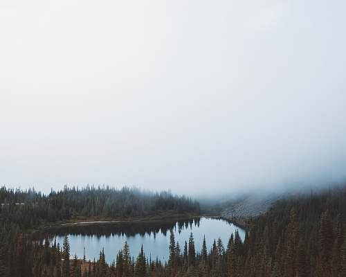 lake landscape photography of body of water between trees under foggy sky forest