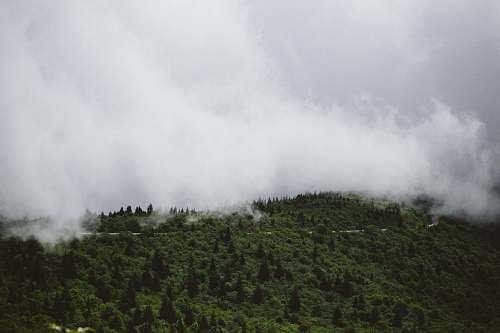 blue ridge parkway aerial photo of green trees and white clouds fog