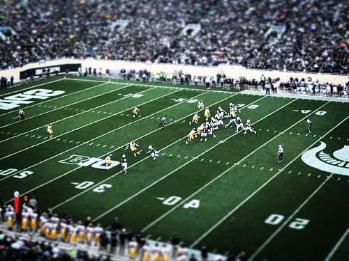 stadium football field football