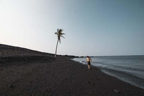 hawaii men's black shorts beach
