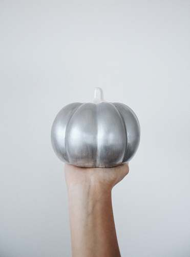 plant person holding silver round ornament pumpkin