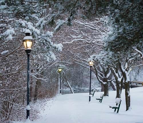 winter streetlight glowing on daytime snow