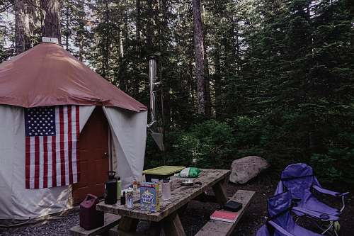 camping dome tent on forest leisure activities