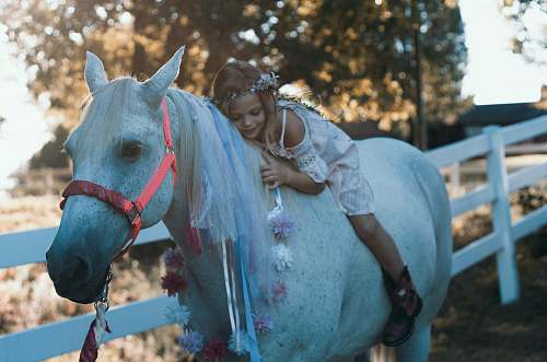 person girl riding white horse during daytime horse