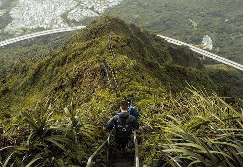 person high angle photo of mountain with stairs people