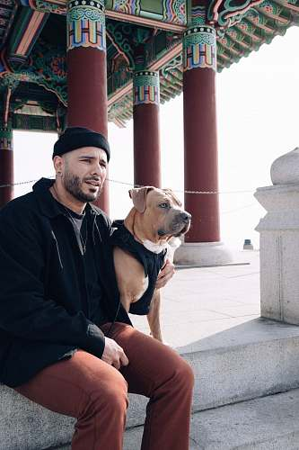 person man in black jacket sitting beside brown and white short coated dog korean bell of friendship