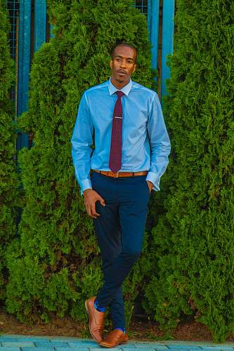 person man in blue dress shirt and pants near green leafed plants people