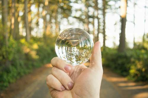 person person holding clear glass ball people