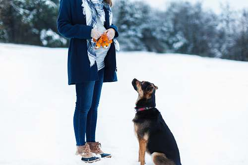 person woman standing beside black dog on snow field people