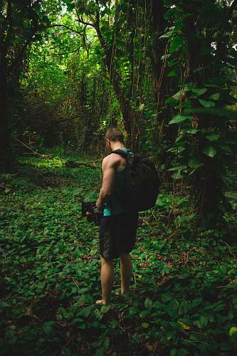 forest man stands near trees and carries black camera and black backpack during daytime plant