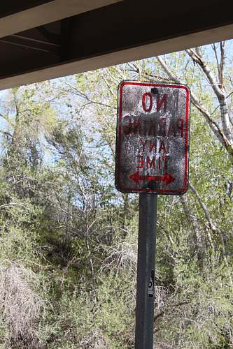 postbox no parking any time signage near green trees at daytime big cottonwood canyon