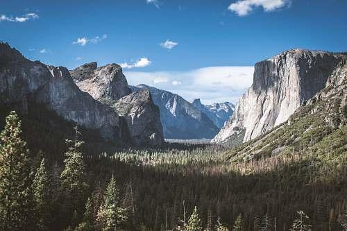 nature El Capitan Yosemite National Park, California crest