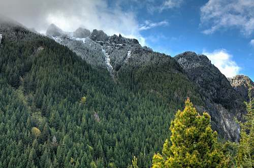 nature green and gray mountain under blue sky at daytime forest