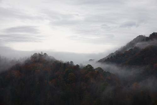 fog photography of white sky blowing rock