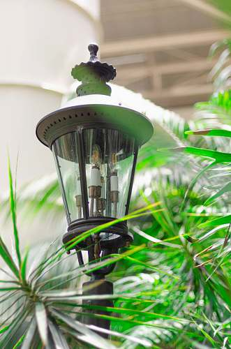 photo united states gray garden post lamp green free for commercial use images