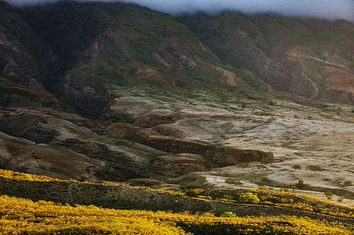 mountain aerial view of yellow fields maui