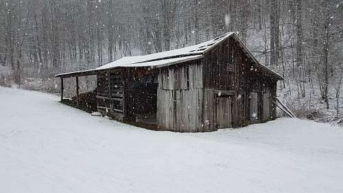 outdoors gray shed coated with snow shack