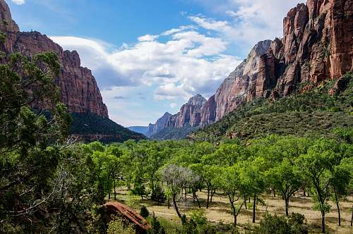 mountain green leafed trees between two rock formations canyon