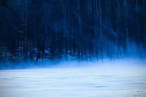blue landscape photography of bare trees mogadore reservoir