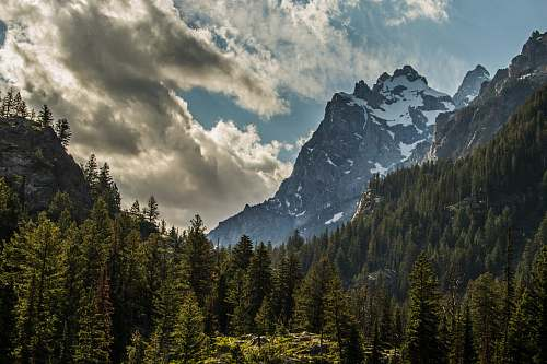 mountain landscape photography of mountains and trees grand teton national park