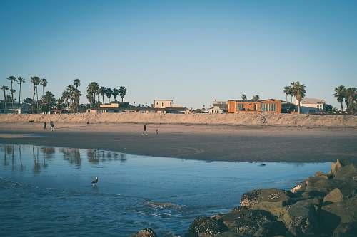 shoreline seashore sea