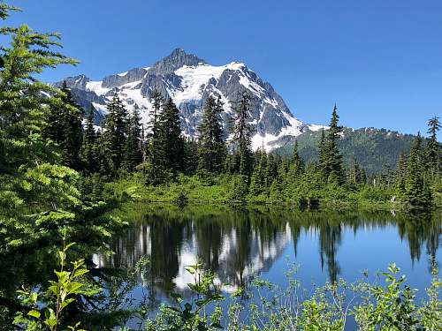 forest snow capped gray mountains near green pine trees and calm body of water outdoors