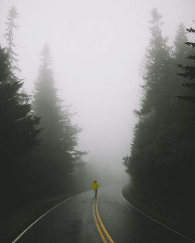 grey woman wearing yellow jacket standing on road surrounded by pine trees fog