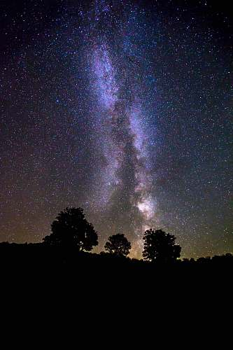 galaxy silhouette of trees under milky way galaxy space