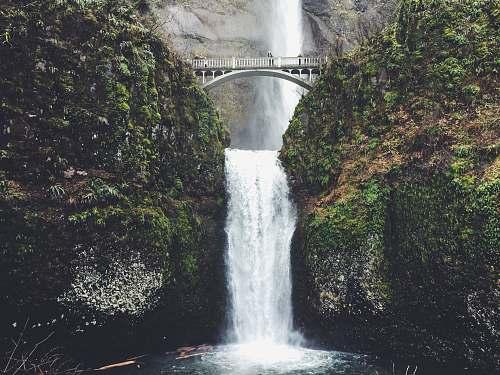 nature multnomah falls in Oregon during daytime water