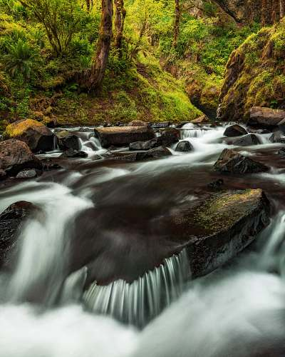 water timelapse photo of running stream creek