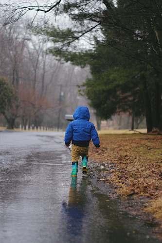 human toddler walking on road while raining puddle