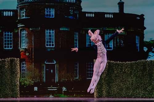 human man wearing rabbit costume jumping near the green grass wall people