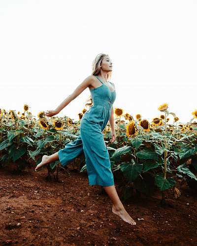 human woman walking near the sunflower field at daytime people