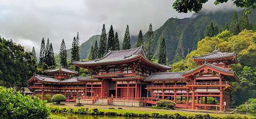 architecture brown wooden pagoda temple surrounded by green trees forest