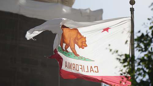 flora California flag jar