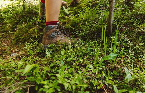 colorado person wearing hiking shoes standing on green grass shoe