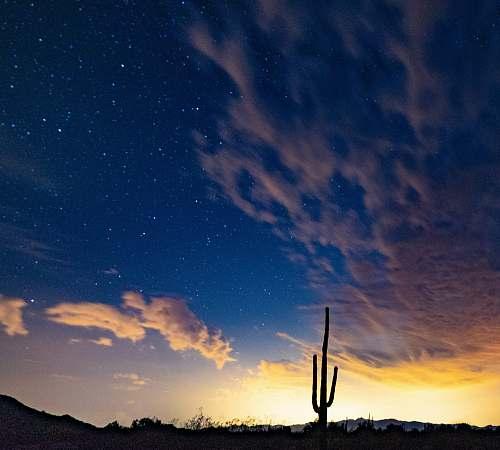 outdoors desert during nighttime salome