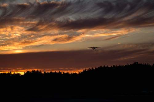 sky biplane on air above silhouette of trees during golden hour dawn