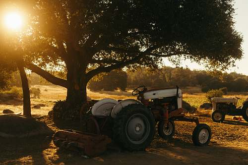 transportation white tractor parked beside tree vehicle