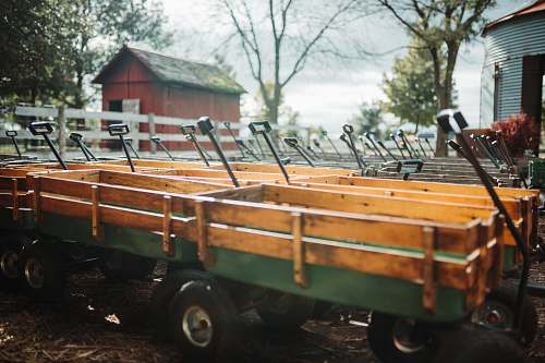 vehicle lined green-and-brown carts in barn wagon