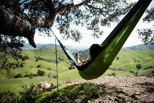 hammock green hammock furniture